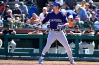 2016 Fantasy Baseball Player Profile: David Dahl Cover Image